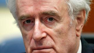 Procès en appel de Radovan Karadzic, ex-chef des Serbes de Bosnie.