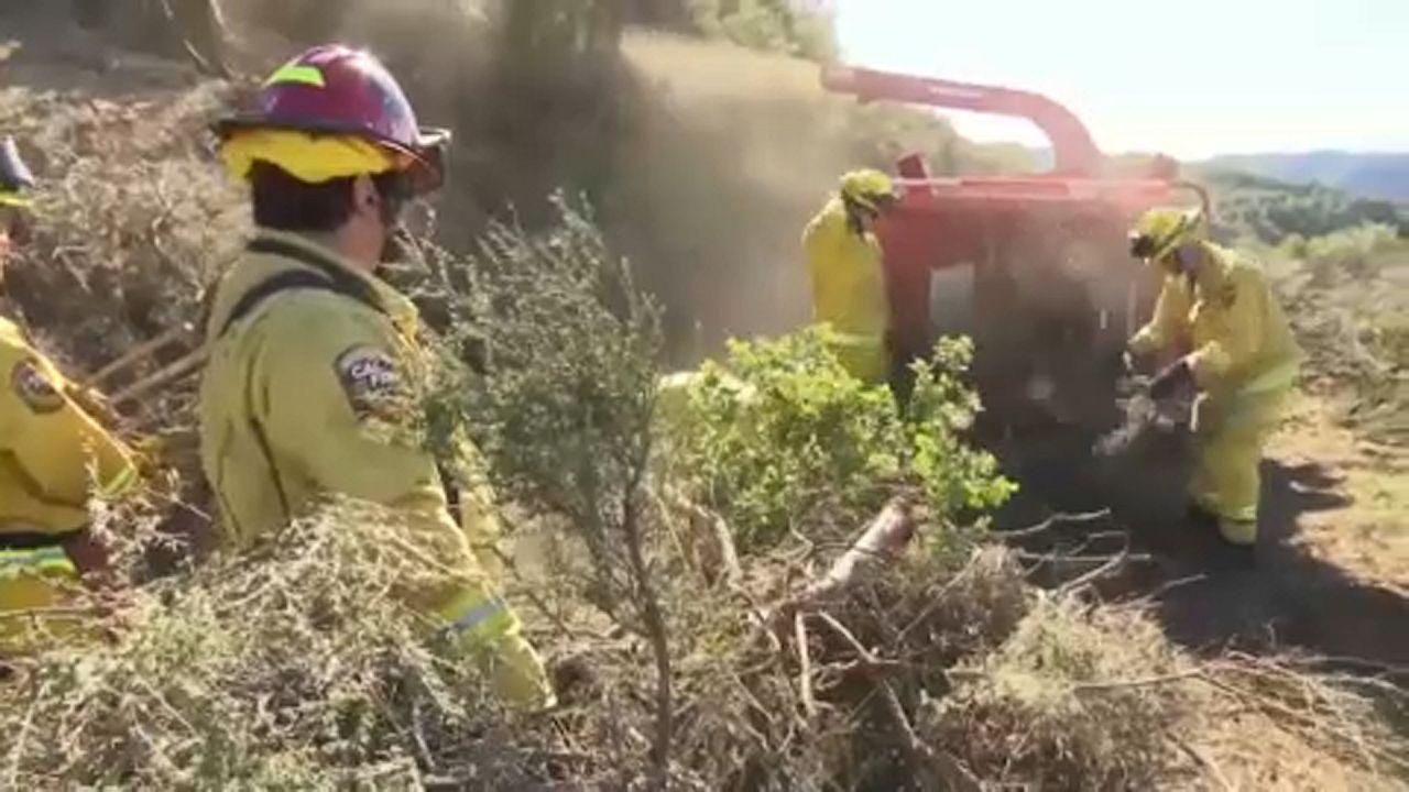 Kalifornia: enyhíthető-e a bozóttűz okozta kár?