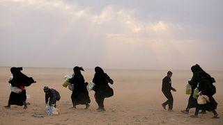 لاجئون من الباغوز على الطريق نحو مخيم الهول شرق سوريا