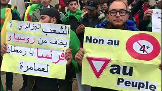 Algeria, di nuovo in piazza contro il presidente Bouteflika