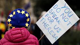 Anti-Brexit protesters demonstrate outside the Houses of Parliament