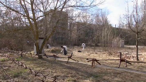 Die Flasche darf bleiben: Müllsammler in Tschernobyl