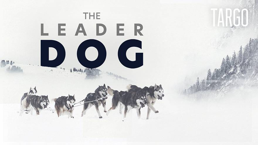 Watch in 360°: Dog-racing across the French Alps | TARGO
