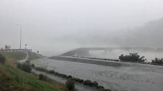 Dramatic footages shows bridge collapse in New Zealand