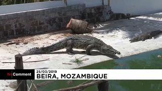 Otthagyták családjukat a mozambikiak, hogy a krokodilok ki ne szabaduljanak a viharban