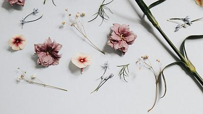 The perfume industry is moving towards sustainable fragrances