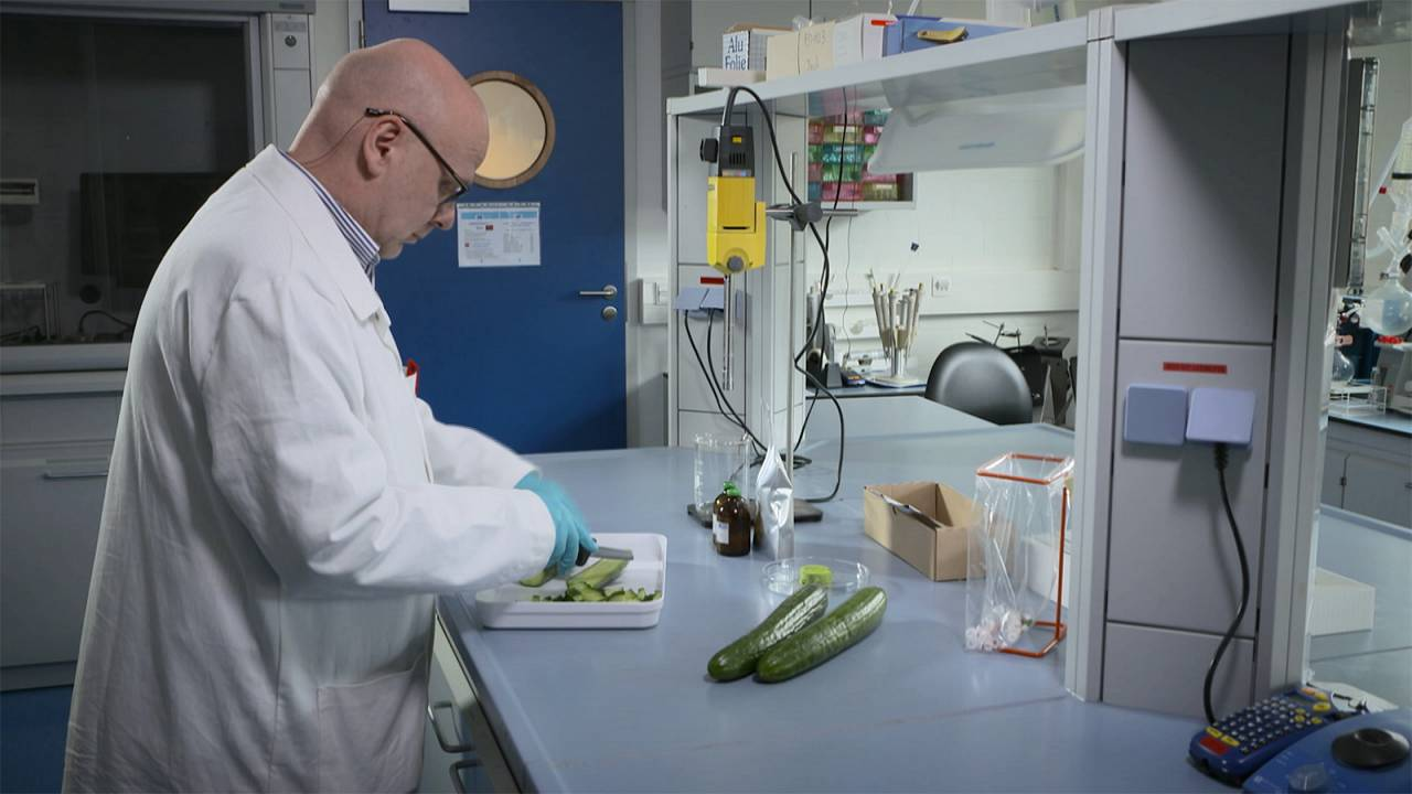 "European Commission funded project uses groundbreaking ""CRMs"" to check food pesticides"