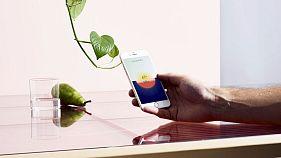 The era of eco-friendly interior design innovation has arrived