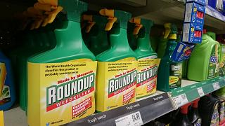 Tarım ilacı üreticisi Monsanto'ya kansere sebep olduğu gerekçesiyle 80 milyon dolar ceza