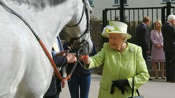 Queen Elizabeth indulges her love of horseracing