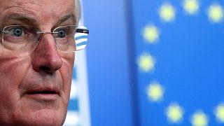 Brexit: EU would allow permanent customs union if UK wants it, says Barnier