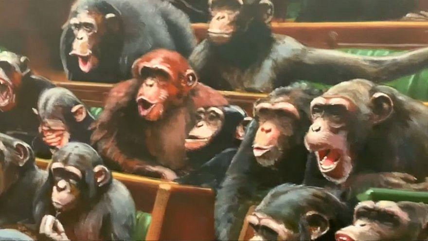 Újra látható Banksy csimpánz-parlamentje