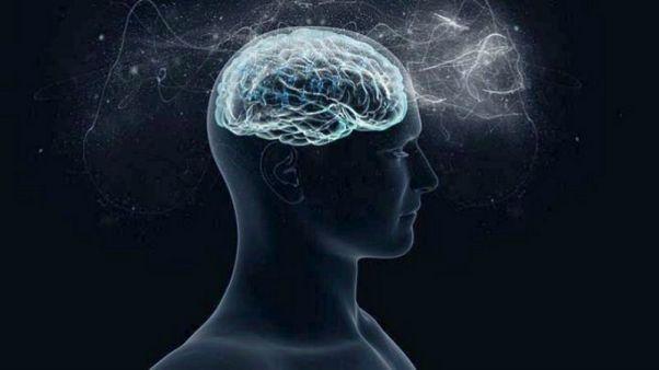 Υπάρχει γυναικείος και ανδρικός εγκέφαλος;