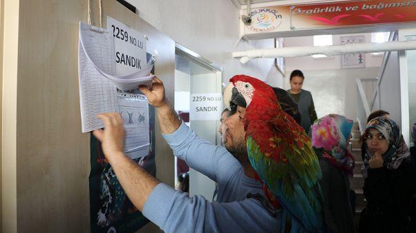Fotoğraflarla 31 Mart yerel seçimleri