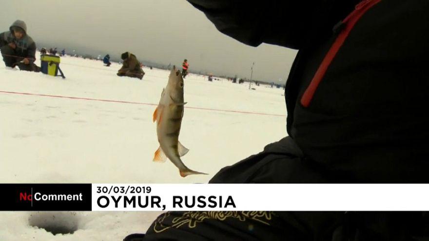 ویدئو؛ رقابت صدها نفری ماهیگیری در دریاچه یخزده بایکال روسیه