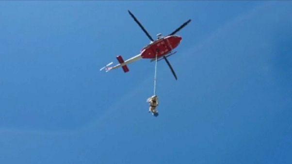امدادگران ایتالیایی گاو اسیر شده میان صخرهها را با هلیکوپتر نجات دادند