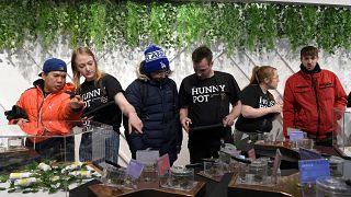 La vente libre de cannabis récréatif débute en Ontario, déjà la folie!