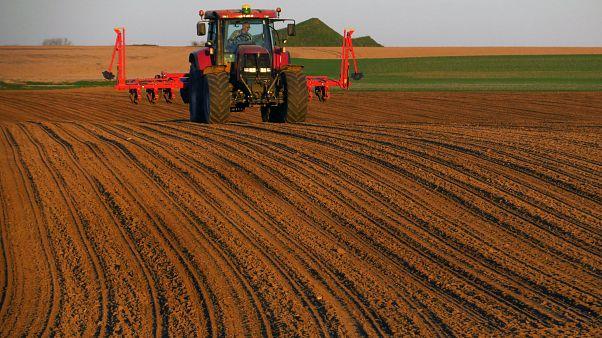 EU-Agrarreform: Mehr Geld für Kleinbauern