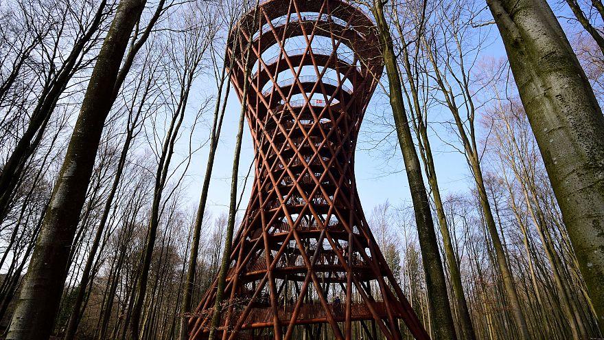 """A 45m au-delà des cimes dans une tour """"éco-responsable"""""""