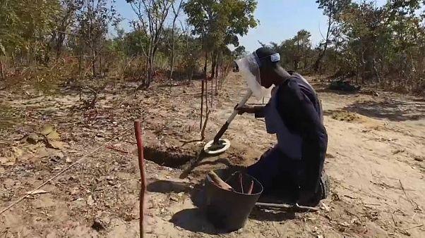 Malanje e Huambo vão ser declaradas livres de minas terrestres