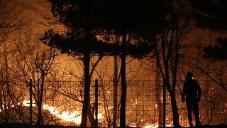 شاهد: حرائق الغابات في كوريا الجنوبية قرب الحدود مع الجارة الشمالية