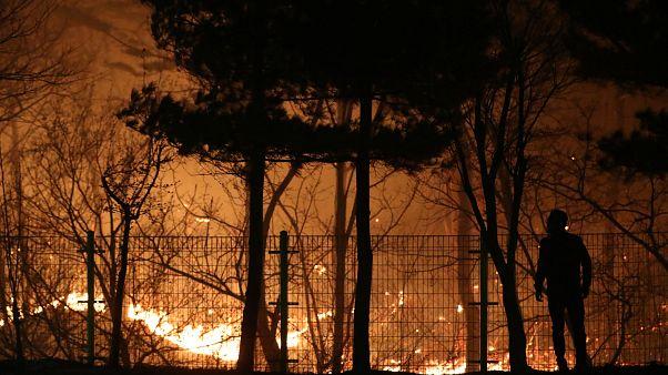 Лесные пожары у олимпийского Пхёнчхана