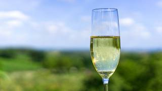 New study finds no evidence of moderate drinking benefits