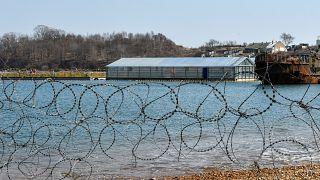 """Rússia vai libertar baleias da """"prisão"""""""