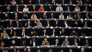 What does the European Parliament do?