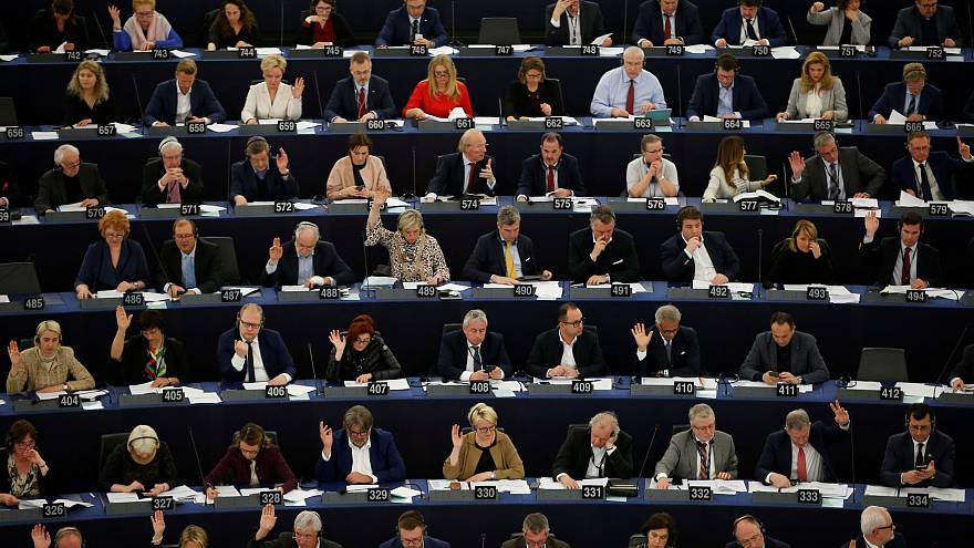 What does the European Parliament do?