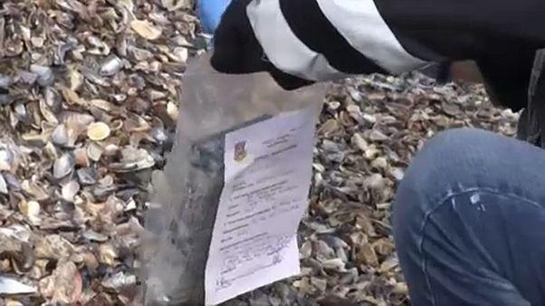 Ρουμανία: 130 κιλά κοκαΐνης ξεβράστηκαν στις ακτές