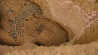 شاهد: اكتشاف مومياء كاهن عمرها 2500 سنة في مصر