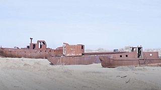 Plantar árboles para salvar el Mar de Aral, la peculiar iniciativa de unos estudiantes uzbekos