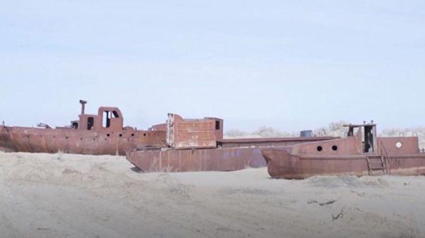 Video | Yüzde 90'ı kuruyan Aral Gölü'nü ağaçlar kurtaracak