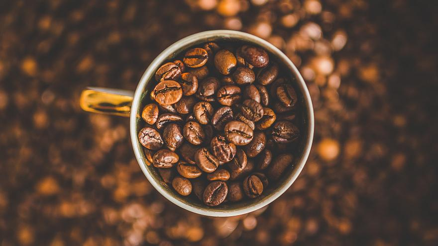 دراسة ثورية: سويسرا تدعي أن القهوة ليست ضرورية لبقاء البشرية