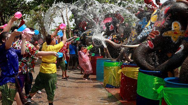 Tayland yeni yıla rengarenk fil ve insanların su savaşıyla girdi