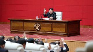 كيم جونغ أون، الزعيم الكوري الشمالي