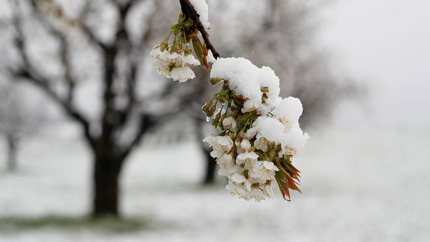 10 der schönsten Bilder vom Schnee - Winterwetter auch zu Ostern?