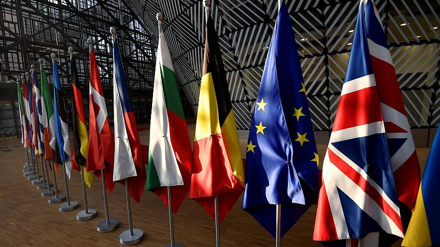 What does the European Council do?