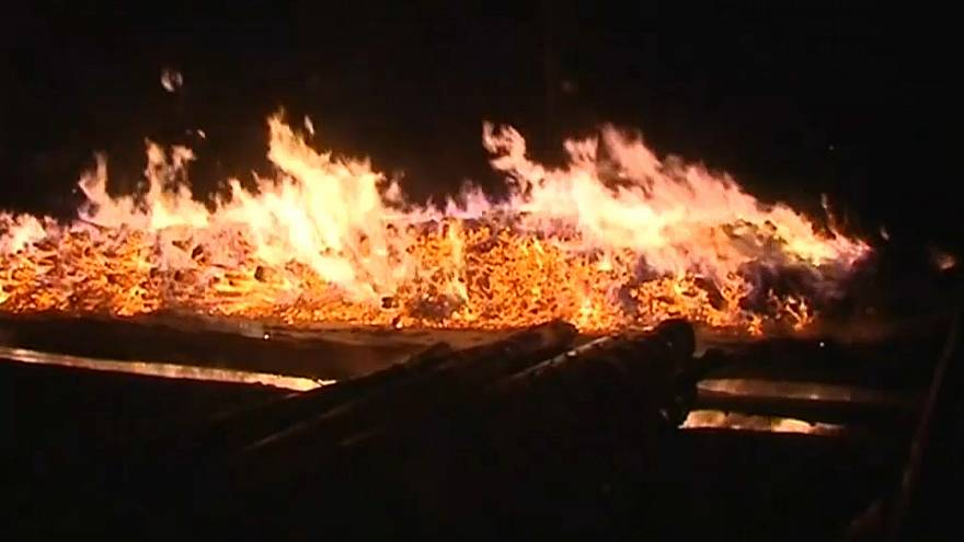 В Минприроды заявляют о поджоге Лосиного острова