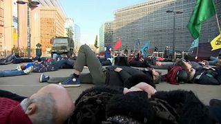 """Акция  в Брюсселе против """"вымирания"""""""