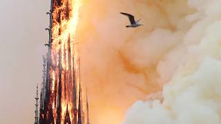 euronews.com - Emma Beswick - Notre Dame fire: Social media users and politicians express solidarity with Parisians