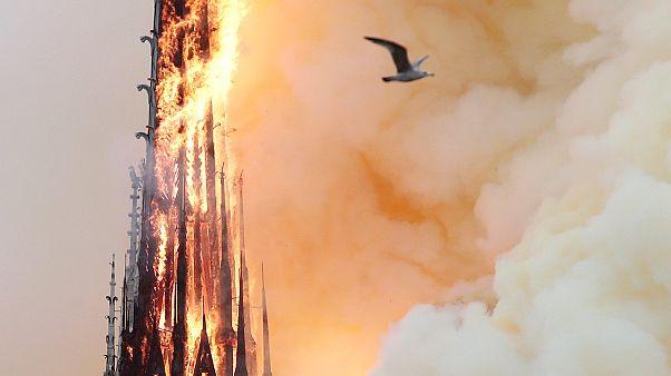 Notre-Dame: Frankreich will Architekturwettbewerb zur Rekonstruktion der Turmspitze