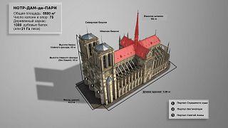Собор Парижской Богоматери в цифрах