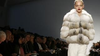 One of the biggest fashion capital would ban the sale of fur