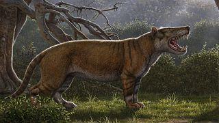 """عمل فنى يصور حيوان""""أسد إفريقيا الكبير"""" المفترس العملاق"""