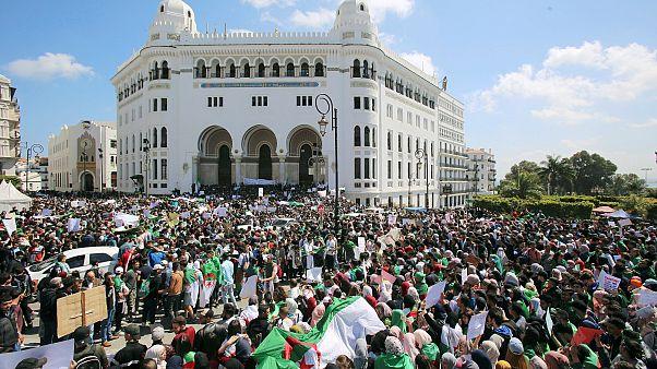 عودة المتظاهرين إلى شوارع الجزائر وسقف المطالب يرتفع