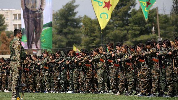 ترکیه دیدار کردهای سوریه با ماکرون را محکوم کرد