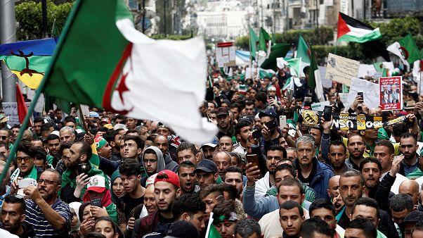 تظاهر الجزائريين في شوارع العاصمة يوم الجمعة