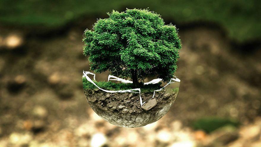 Cos'è la Giornata Mondiale della Terra e cosa potete fare nel vostro piccolo